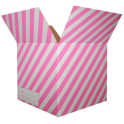 The Striped Moving Box - Pink/Small